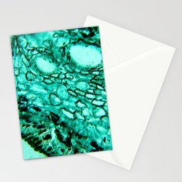 Cellular Surface Stationery Cards