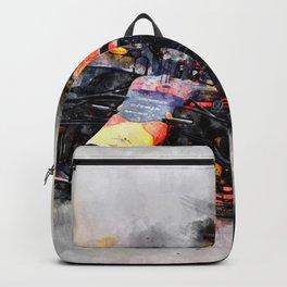Max Verstappen Racing Backpack