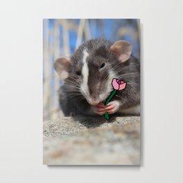 A rat's flower Metal Print