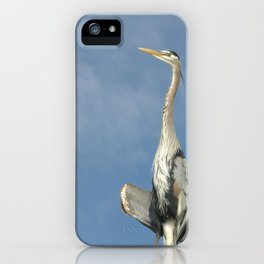Avian Yoga iPhone Case