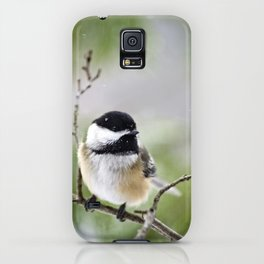 Chickadee Bird iPhone Case