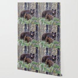 Sow & cub in Jasper National Park   Canada Wallpaper