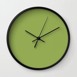 Rudy ~ Green Field Coordinating Solid Wall Clock
