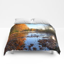 Salmon Sanctuary - Adams River BC, Canada Comforters