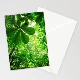 Rainforest Radiance Stationery Cards