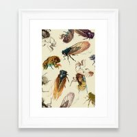 dragon ball z Framed Art Prints featuring summer cicadas by Teagan White