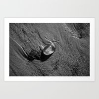 jelly fish Art Prints featuring Jelly Fish by Paul Vayanos