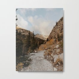 The Trail In Metal Print