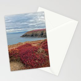 Irish Pomegranate Coast Stationery Cards