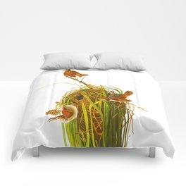 Marsh Wren Comforters