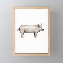Pig, Farmhouse Painting, Rustic Watercolor Framed Mini Art Print