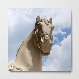Stone Horse Head 1 Metal Print