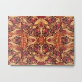Cinnamon Potpourri Metal Print