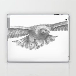 Golden eagle in flight, Aquila Chrysaetos Laptop & iPad Skin