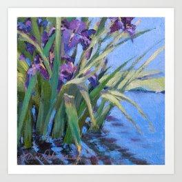 Sun Day—Iris Art Print