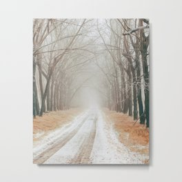 Winter on the road Metal Print