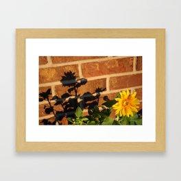 My Sunflower, Julia #3 Framed Art Print