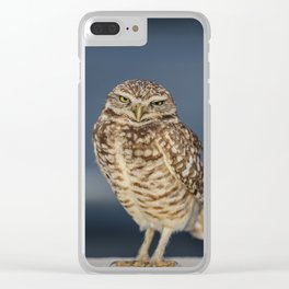 Burrowing Owl Clear iPhone Case