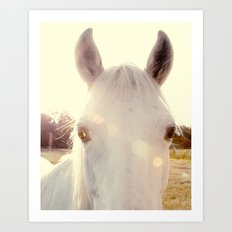Sunshine horse Art Print