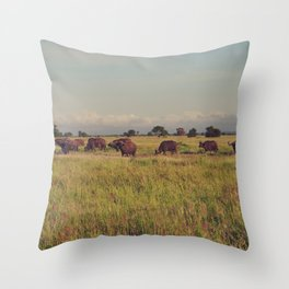 Vintage Africa 13 Throw Pillow