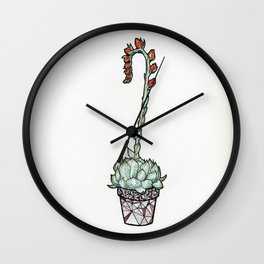 Blooming Echeveria Wall Clock