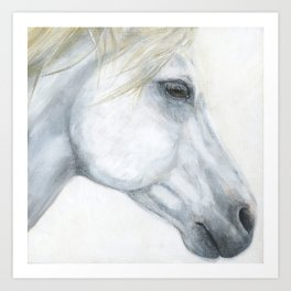 Sacred Stallion Art Print