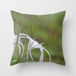 Spider Lily #3 Throw Pillow