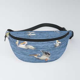 white pelican takeoff Fanny Pack
