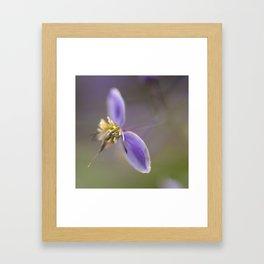 Purple Two Framed Art Print