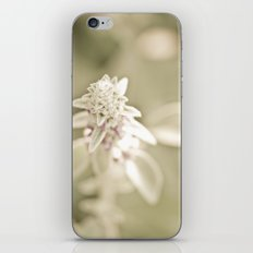 Reaching Up iPhone & iPod Skin