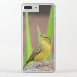 Yellow Warbler at the Fountain Clear iPhone Case
