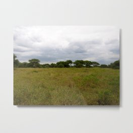 A Beautiful View in Africa Metal Print