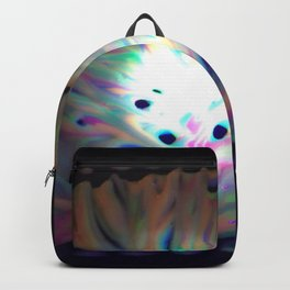 Cosmic exploration Backpack
