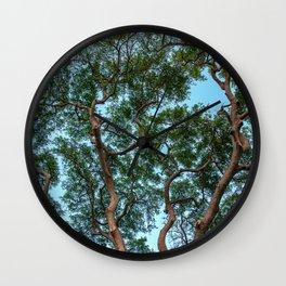 monkey pod tree Wall Clock
