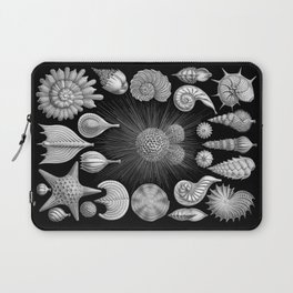 Sea Shells and Starfish (Thalamophora) by Ernst Haeckel Laptop Sleeve