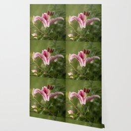 Pink Lily in The Autumn Garden #decor #society6 #buyart Wallpaper