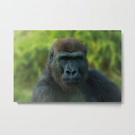 The One And Only Gorilla Lope Metal Print
