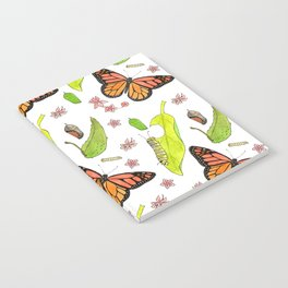 Monarch Migration Notebook