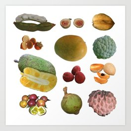 Exotic Fruit Collage Art Print