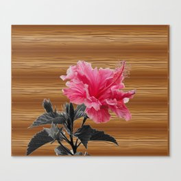 hibiscus on the wood Canvas Print