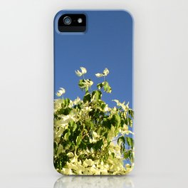 Dogwood #1 iPhone Case