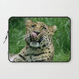 Amur Leopard Laptop Sleeve