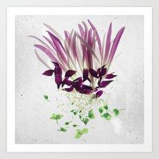 Alien Plant Botanical Blueprints Art Print