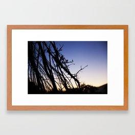 Shine through the Vine Framed Art Print