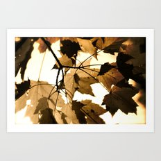 Leave it out. Art Print