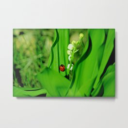 The Ladybug and Lily of the valley Metal Print