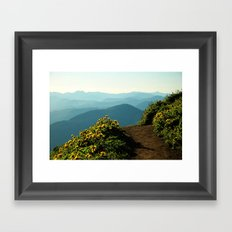 Flowering Balsam Root on Dog Mountain, Columbia River Gorge, Oregon Framed Art Print