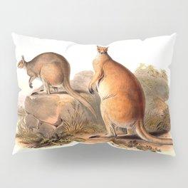 Vintage Kangaroos Australia Pillow Sham