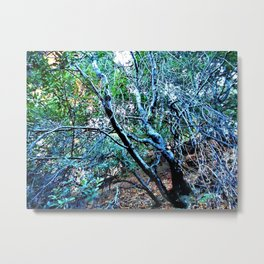"""Hillside Trees at Dusk"" Metal Print"