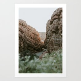 Sprin in the slot canyon Art Print